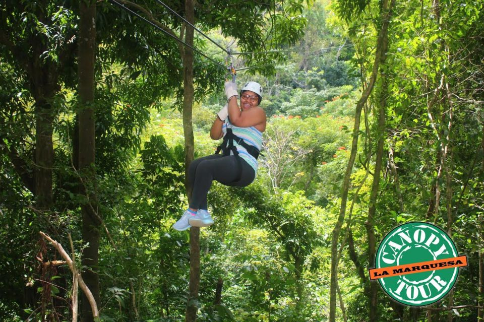 canopy_tours